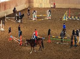 Уроци по конна езда за начинаещи и напреднали