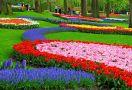 Пролет 2015 в Холандия - цветната феерия на парка Keukenhof, ПРОМО