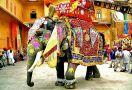 Индия и Непал - духовния център на земята, ПРОМО