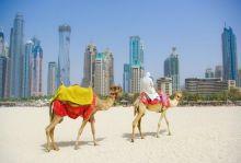 Дубай - слънчев заряд през зимата, кратка програма