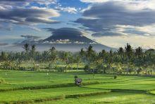 Бали - сърдечната чакра на земята, 8 нощувки