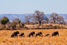 Килиманджаро - покрива на Африка, сезон 2018/2019