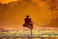Шри Ланка - земята на Буда и Рама, 22.11-01.12.19г., Група с водач