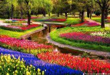 Цветна пролет 2021 в Холандия - парка Keukenhof и Амстердам