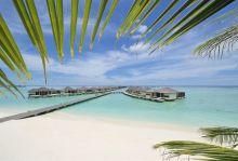 Рапсодия в синьо - Малдиви, 17-26.10.2021г., Ранни